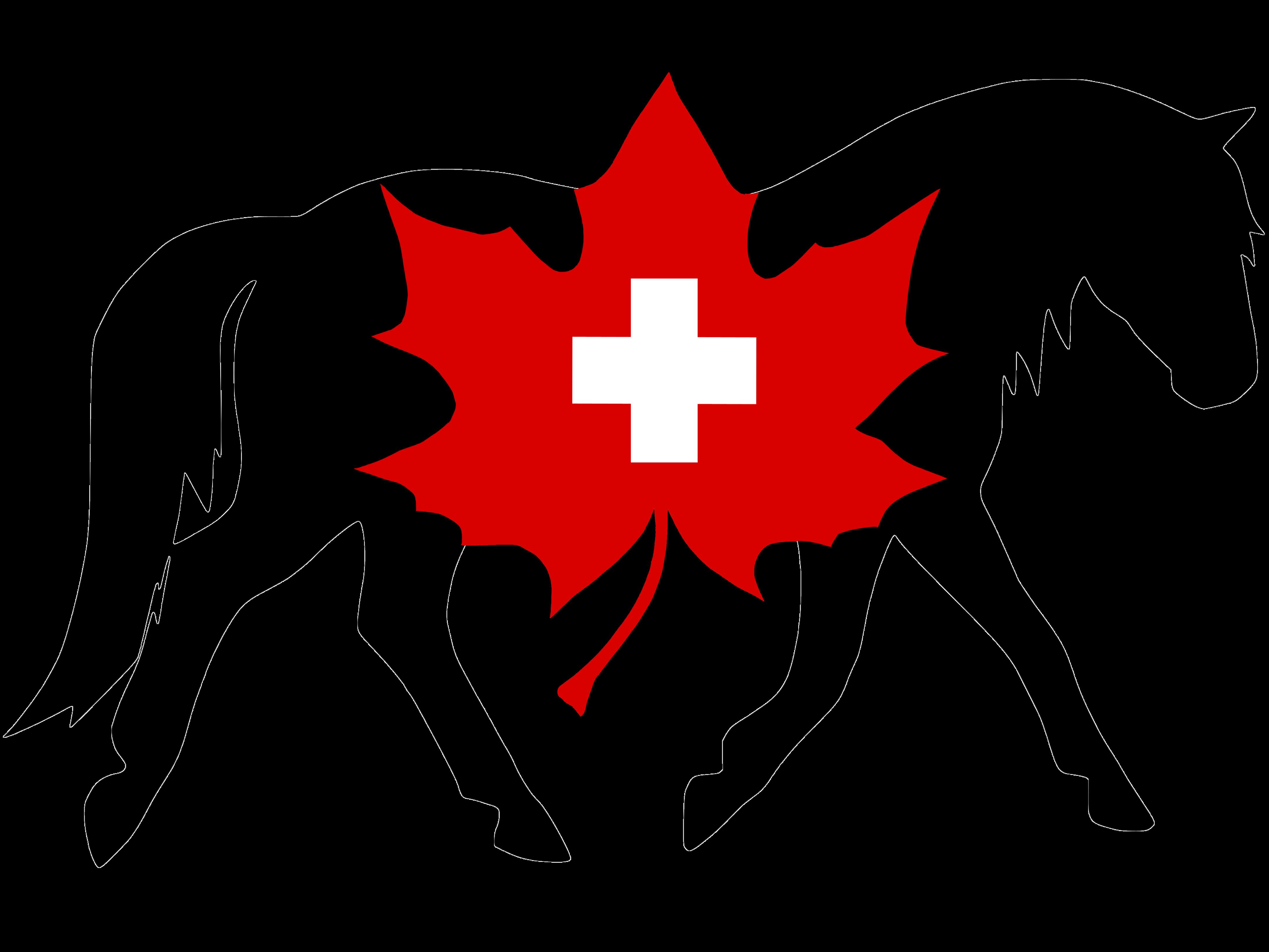 Canadian Horse Verband Schweiz